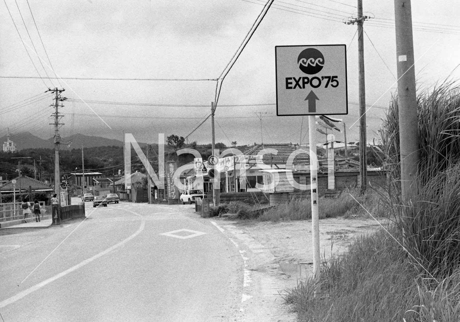 DL1984